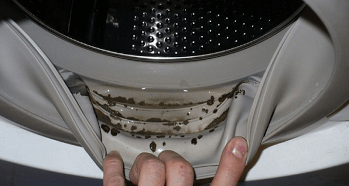 Die Waschmaschine Ist Ein Perfekter Ort Für Schimmel Um Sich Einzunisten,  Denn Schimmel Liebt Feuchte Und Warme Orte. Wenn Man Wäsche Wäscht Und Hat  Dabei ...